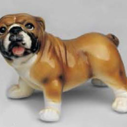 bulldogbeigezampebianche-17x12cm