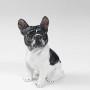 frenchbuldog-biancomusoschienaneraseduto18x27