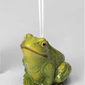 portascopino-rana