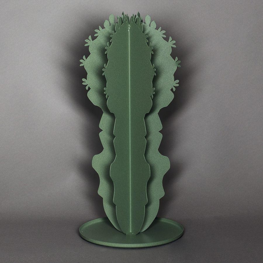 Angolobellaria_cactusmedio